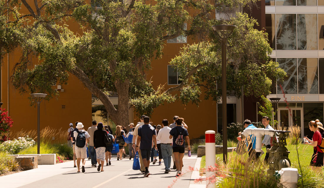 A group of students on a walkway in the residential area of campus