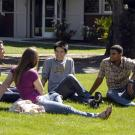 Four UC Davis student sit on a sunny lawn and talk